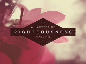 Harvest of righteousness
