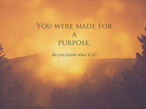 purpose do you know what it is